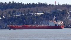 Duzgit Endeavour (Jacques Trempe 2,230K hits - Merci-Thanks) Tags: canada river ship quebec stlawrence stlaurent tanker fleuve caprouge endeavour navire petrolier dizgit petrolierta