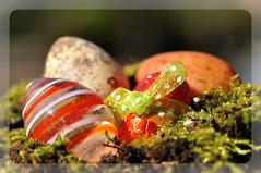 Ei Ei Ei Ei (nirak68) Tags: deutschland flickr egg marzipan lbeck schokolade glas moos ei wachtelei 086366 schleswigholsteinkreisfreiehansestadtlbeck c2016karinslinsede 52wochenfotochallenge