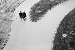 divide (gato-gato-gato) Tags: street leica bw white black classic film blanco monochrome analog person schweiz switzerland flickr noir suisse strasse zurich negro streetphotography pedestrian rangefinder human streetphoto manual monochrom zrich svizzera weiss zuerich blanc m6 manualfocus schwarz ch wetzlar onthestreets passant mensch sviss leicam6 zwitserland isvire zurigo streetphotographer fussgnger manualmode zueri strase filmisnotdead streetpic messsucher manuellerfokus gatogatogato fusgnger leicasummiluxm35mmf14 gatogatogatoch wwwgatogatogatoch streettogs believeinfilm