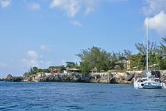 DSC_4405 (shutterbugss) Tags: cliff nikon jamaica negril cliffdiving rickscafe nikond90