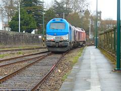 Takargo Rail 6004 manobrando a Comsa 335_001 (Ricardinho Rodrigues) Tags: rail 6004 comsa takargo 335001