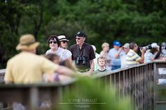 Les amoureux de la nature (Sophie 33) Tags: mars nature oiseaux refuge delraybeach floride 2016 wakodahatcheewetlands photographes visiteurs