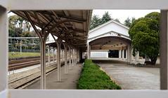 Tokyo /  (Japan) - Old Harajuku Station (Danielzolli) Tags: japan tokyo gare bahnhof railwaystation trainstation harajuku  nippon  stazione japon giappone nihon tokio gara  dworzec stanica  stanice