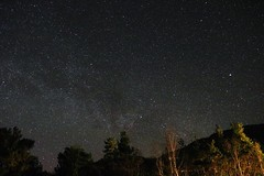Night sky (Orry_2000) Tags: trees sky texture night canon dark stars star outdoor 1855mm orry 12800 750d