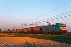 E483 005 RTC (equo25) Tags: wagon merci eisenbahn railway zug treno bombardier ferrovia locomotiva cereali guterzug ellok getreidesilowagen