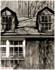 Weathered windows (DelioTO) Tags: windows ontario canada architecture rural blackwhite spring woods trails april historical 4x5 toned schneider lensed 210mm autaut aph09 panx64