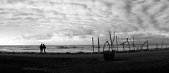 Dismal Sunset.. (setoboonhong) Tags: new travel sea sky bw sculpture west beach nature clouds island coast woods waves mood wind dusk south silhouettes panoramic zealand shore hokitika drift seacscape