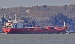 Duzgit Endeavour (Jacques Trempe 2,230K hits - Merci-Thanks) Tags: canada river ship quebec stlawrence stlaurent tanker fleuve caprouge endeavour navire petrolier duzgit
