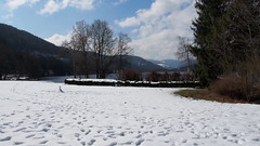 P3132300 () Tags: france germany colmar titisee