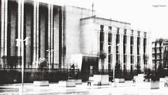 Palazzo dei veleni (Angelo Trapani) Tags: palermo palazzo mafia icm stato giustizia potere corruzione antimafia veleni antistato