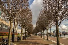 Salford Quays (shabbagaz) Tags: city uk greatbritain england west manchester unitedkingdom britain sony united great north salfordquays kingdom lancashire april alpha salford quays 2016 a65 shabbagaz