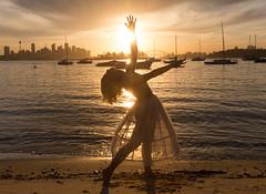 Balletic sunset (Rambo2100) Tags: city light sunset ballet sun sunlight beach water boats movement outdoor expression sydney australia sparkling sydneyharbour sydneyharbourbridge sydneycbd portjackson rambo2100