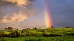 Le merveilleux pays des Licornes. (virginiefort) Tags: cloud tree landscape rainbow nikon meadow prairie nuage paysage arbre arcenciel d600 afs241204ged pr