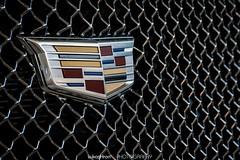 Autosalon Bratislava (Lukas Hron Photography) Tags: slovensko slovakia bratislava autosalon