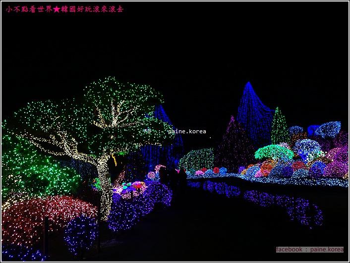 晨靜樹木園 五色星光庭園展 (46).JPG