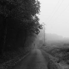 I will be silent (Arianna_M(busy)) Tags: fog silence tuscany ghosts toscana happyholidays merrychristmas nebbia christmastime auguri silenzio valdarno fantasmi iluoghidelcuore collinetoscane buonnataleatutti imieiluoghi