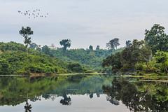 IMG_8266 (Tarek_Mahmud) Tags: travel landscape wildlife tmp waterscape trk mhd hotography srimangol trkmhd sylhit lawyachota madhoppurlake