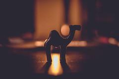 06/365 |toca despedirse de los camellos| (elbapvaro) Tags: canon eos 50mm 365 camello reyes camell project365 diadereyes 365project proyecto365 365dias 700d