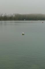 BOIRA AL LLAC (Joan Biarns) Tags: lago paisaje catalunya niebla 189 llac paisatge banyoles estany boira pladelestany panasonicfz1000