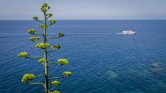 View from Via Dell'Amore - Cinque Terre (truszko) Tags: italy landscape europe liguria it via cinqueterre riomaggiore dellamore