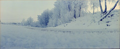 (HolmisticWalker) Tags: winter panorama film december fujisuperia400 epsonv550 zenithorizon202