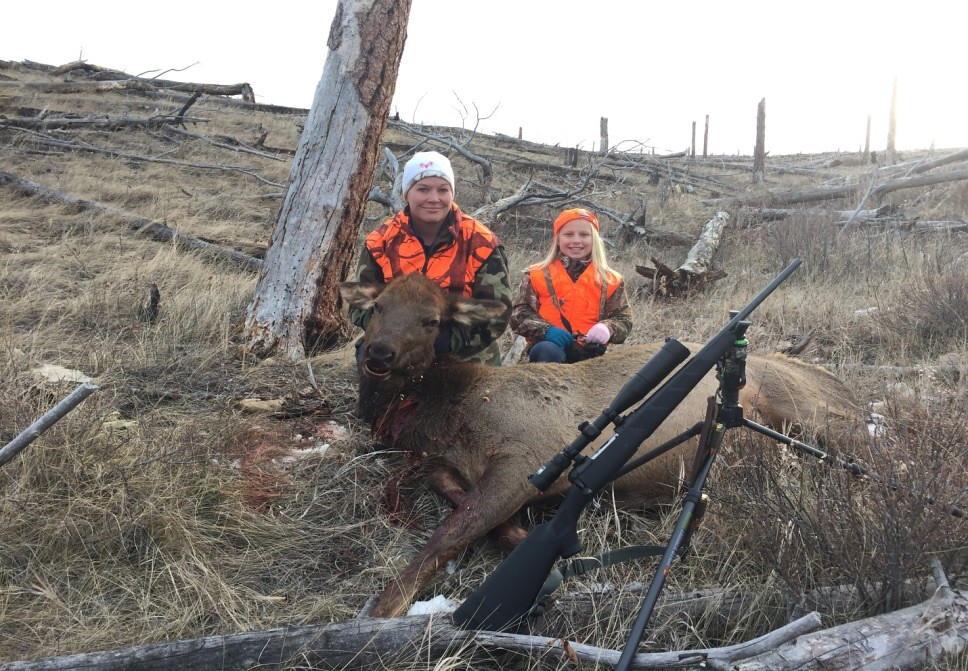 d37427c97 The southern hills district used a cow elk facsimile along the road in an  effort to deter shooting from the road at big game.