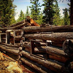 Old pic I took on my old 35mm, in the mid-southern Sierras.  #gonebutnotforgotten #beautifuldecay #explore #logcabin #abandonedplaces #leftbehind #ifwallscouldtalk #pixel_earth #sierranevadas (brandyjokyleen) Tags: abandoned square logs explore logcabin squareformat mountainmusic sierranevadamountains frozenintime abandonedplaces handcut gonebutnotforgotten southernsierras builtbyhand iphoneography instagramapp