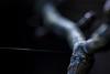 Light and Silk of a Spider (HikerandBiker) Tags: light macro licht bokeh silk hintergrund spidersilk unschärfe schärfe spinnfaden canoneos5dmarkii canonef100mm128lisusm
