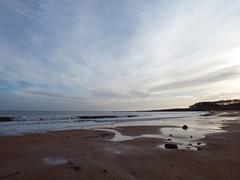 Kingsbarns Beach (nz_willowherb) Tags: beach scotland fife fifecoastalpath kingsbarns