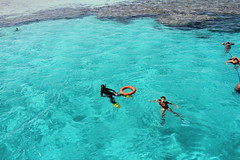 reefs of the coral sea (Memi Ketie Kokovich) Tags: red sea summer tourism water coral redsea extreme sunny snorkeling watersports coralsea coralreefs extremetourism extremeholiday redseatourism