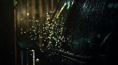 IMG_6253-2 (dafloct) Tags: chile auto desktop wallpaper luz sol car rain del canon de atardecer lluvia garage wash t5 rayo region fondo washing escritorio vidrio pantalla estacionamiento curico maule lavado