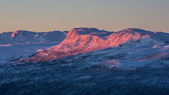 Early morning pink sun (nemi1968) Tags: pink blue trees winter mountain snow mountains tree canon dawn january markiii canon5dmarkiii ef70200mmf28lisiiusm