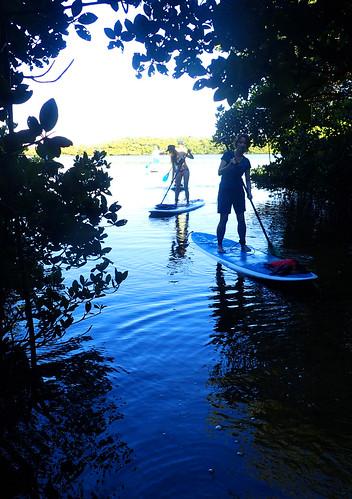 2_17_16 Kayak Paddleboard Tour Sarasota FL 18