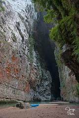 _DSC3470 (Jorge De Silva R) Tags: nature rio de la photo adventure venta caon chiapasmexico fotografiadenaturaleza