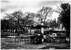 #4199 Ueno (Potemkin666) Tags: japan tokyo ueno fujifilm 25mm carlzeiss biogon xpro2