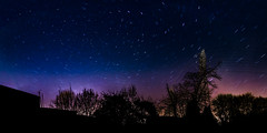 Stars in the night sky (quentin_uda) Tags: blue sky color tree night landscape star purple wideangle tokina atx116prodx