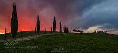 Living in Tuscany (hammockbuddy) Tags: travel trees light sunset sky italy storm green clouds florence europe italia tuscany firenze cypress toscana 500px ifttt