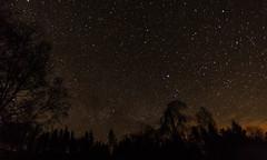 Galloway Forest Park-8961 (pewatts) Tags: stars outdoors scotland april nightsky darksky starrynight dumfriesandgalloway gallowayforestpark