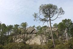 Piscia di Ghjaddu (demeeschter) Tags: mountain lake france forest landscape village corse dam corsica