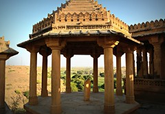 Dome (Scossadream) Tags: door light woman india elephant colour bus brick stone kids children temple kid women squirrel gallery desert fort shepherd balcony delhi indian faith swastika flock plate flamingos palace camel mausoleum dome spacemonkey worker superstition bikaner karnimata jaisalmer rajasthan jodhpur redfort humayunstomb jamamasjid smp mehrangarh bluecity mandawa badabagh divinities svastica junagarh thardesert scossa jaswantthada indiangate d7100 worldpeacegong lucaguizzardi spacemonkeypictures nikond7100