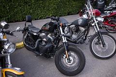 _R001333.jpg (Alain Stoll) Tags: bike indian motorbike harleydavidson bikers hellsangels tancrou