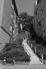 Budapest lpcsi / Stairs in Budapest (bencze82) Tags: stairs budapest mm 20 voigtlnder f35 colorskopar lpcs slii
