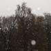 Aprilschnee (05)