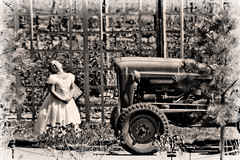 The Girl In The White Dress () Tags: tractor girl garden sepiatone whitedress