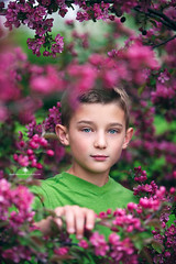 (Rebecca812) Tags: pink flowers boy portrait childhood canon eyecontact child branches blueeyes springtime blondhair floweringshrub rebecca812