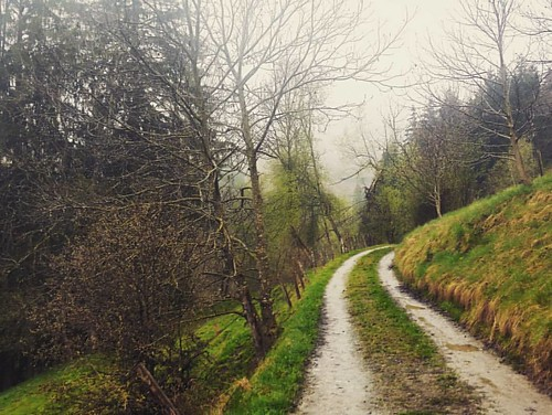 Each road leads somewhere #nature #travel #mountain #rain #austria #kärnten #road