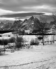 A Snowy Landscape Setting with a View to the Teton Mountains (Portrait Orientation) (thor_mark ) Tags: trees day2 mountains nature blackwhite unitedstates overcast wyoming moran grandteton sagebrush snowylandscape tetonrange grandtetonnationalpark project365 mountowen middleteton colorefexpro teewinotmountain southteton lookingsw mountainsindistance roadsidepulloff usroute26 nikond800e mountainsoffindistance capturenx2edited hillsideoftrees triptoidahoandgrandtetons greateryellowstonerockies tetonrangeyellowstonearea