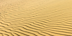 20160226_DV_trip_017 (petamini_pix) Tags: california morning abstract sand pattern desert dune deathvalley rippled sanddune mesquitedunes