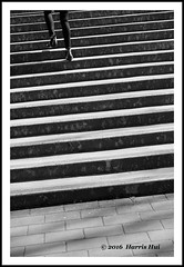 Climbing Up - Coal Harbour XT3196e (Harris Hui (in search of light)) Tags: street bw canada feet vancouver stairs 35mm blackwhite highheels fuji bc candid streetphotography richmond climbing heels fujifilm digitalbw coalharbour downtownvancouver streetcandid standardlens xt1 fujix mirrorless climbingup feetcandid harrishui vancouverdslrshooter fujixseries digitalmirrorlesscamera fujixcamera fujixt1 fujixambassador fuji35mmf2
