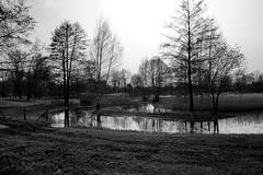 (simon_berlin62) Tags: park bw reflection berlin nature out photography blackwhite spring day natur stadtpark frhling neuklln britz  2016 britzergarten schwarzweis berlinneuklln   berlinbritz sdberlin britzergrten